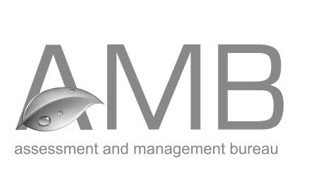 AMB Holding